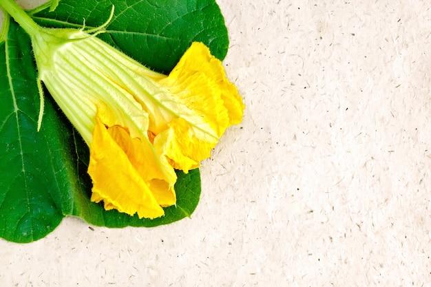 Gelbe kürbisblume oder zucchini mit grünem blatt auf einem hintergrund aus braunem grobem packpapier