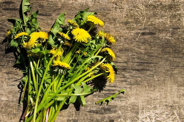 Gelbe löwenzahnblumen auf rustikalem holzhintergrund. ansicht von oben