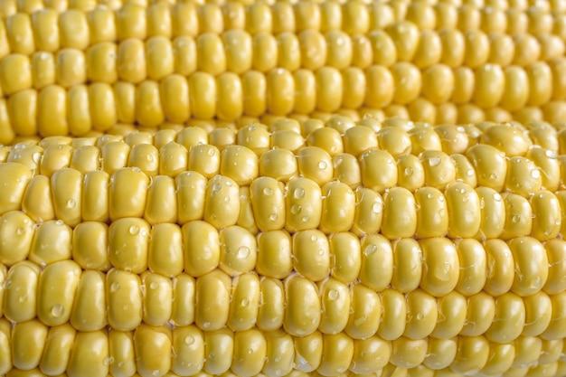 Gelbe maiskörner