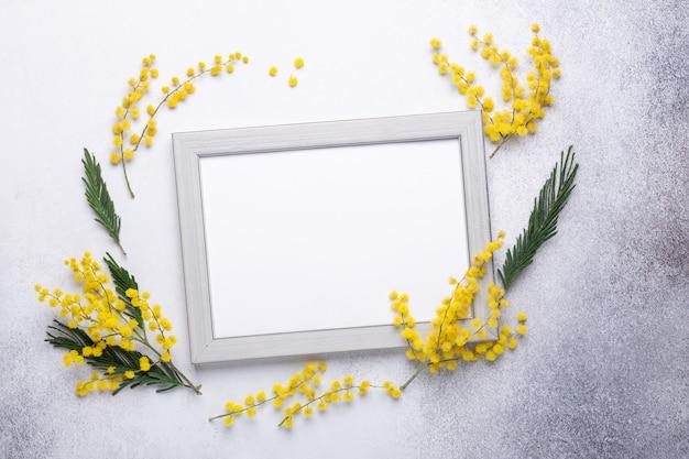 Gelbe mimosenblumen und -rahmen auf steinhintergrund.