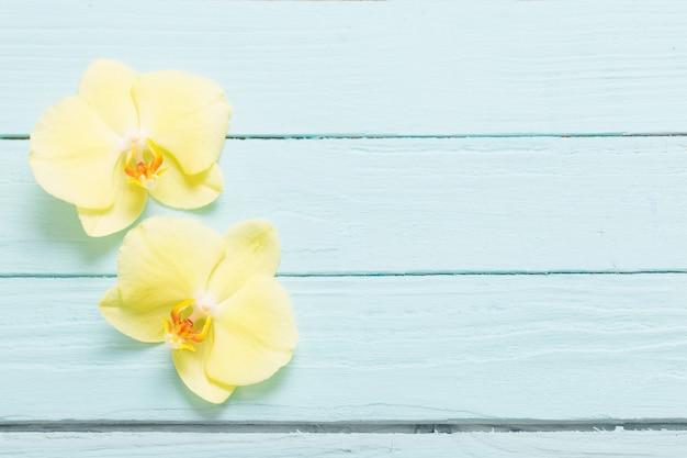 Gelbe orchideen auf blauem hölzernem hintergrund