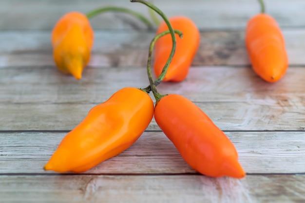 Gelbe paprika, die hauptzutat in der peruanischen küche