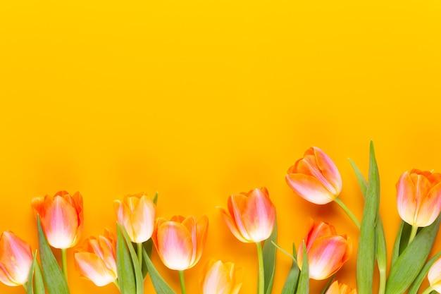 Gelbe pastellfarben färben blumen auf gelbem hintergrund. warten auf frühling. frohe osterkarte. flache lage, draufsicht. speicherplatz kopieren.