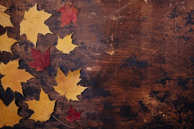 Gelbe rote ahornblätter verlässt alten hölzernen schmutz