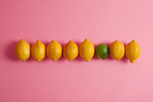 Gelbe saftige zitronen mit glatter schale und einer grünen limette in reihe vor rosa hintergrund. große faserquelle, die zur verbesserung der verdauungsgesundheit und zur unterstützung des gewichtsverlusts beiträgt. konzept für gesunde früchte