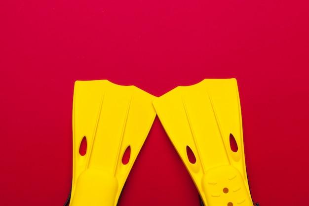 Gelbe schwimmflossen auf gefärbt