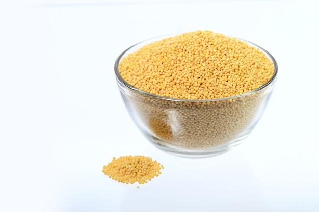Gelbe senfkörner in der glasschale isoliert