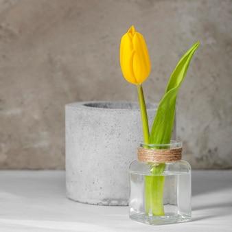 Gelbe tulpe der vorderansicht in einer vase