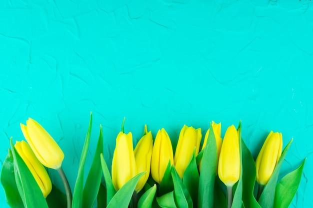 Gelbe tulpen auf blauem hintergrund