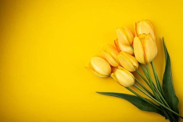 Gelbe tulpen auf gelbem hintergrund.