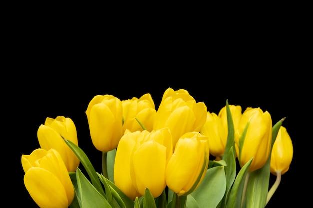 Gelbe tulpen auf schwarzem hintergrund. blumenstrauß zu verschenken. foto in hoher qualität