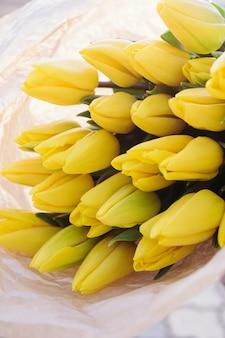 Gelbe tulpen. blumenfrühlingshintergrund.