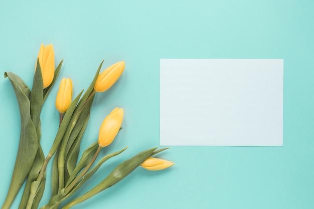 Gelbe tulpen mit leerem papier auf blauer tabelle
