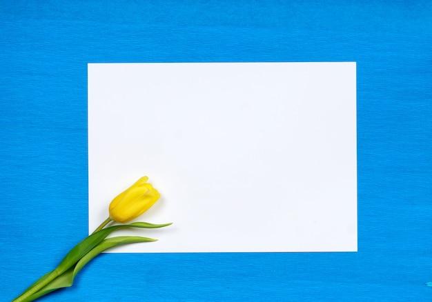 Gelbe tulpenblume auf leerem weißem papier