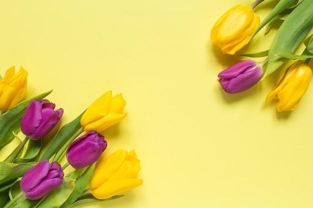 Gelbe und purpurrote blumentulpen in einem blumenstrauß auf einem gelben hintergrund, frühlingshintergrundgrußkarte