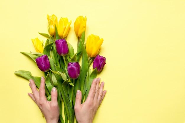 Gelbe und purpurrote blumentulpen in einem blumenstrauß auf einem gelben hintergrund und die hände einer frau,