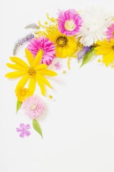 Gelbe und rosa blumen auf weißem hintergrund