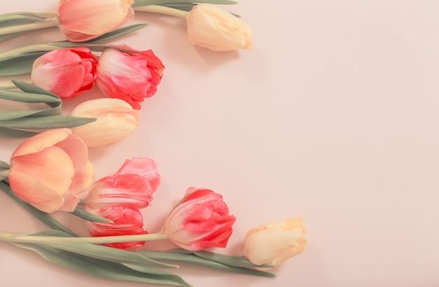 Gelbe und rote tulpen auf beiger oberfläche