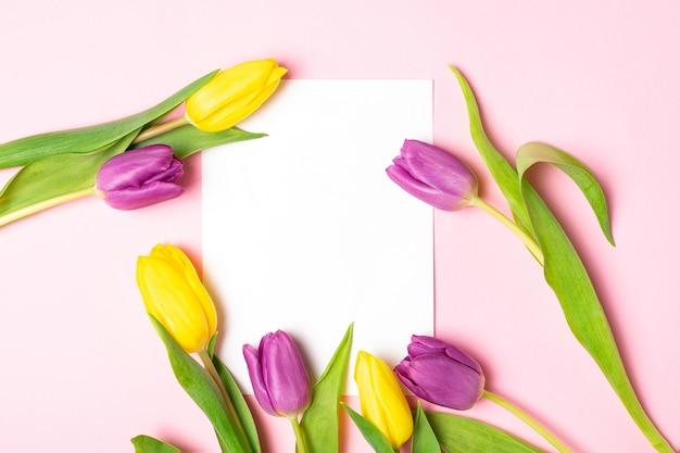 Gelbe und violette tulpen, leeres papier auf rosa
