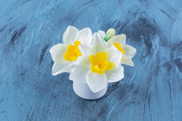 Gelbe und weiße trompetennarzissten blühen wunderschön in der vase.