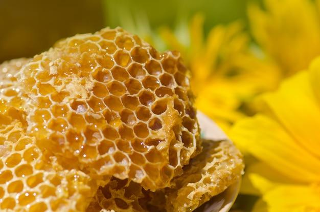 Gelbe wabenscheibe. honig-zellscheibe. schüssel mit frischen waben und honig