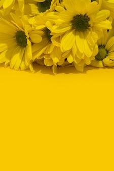 Gelber chrysanthemenblumenstrauß auf gelbem copyspace