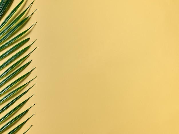 Gelber hintergrund für produktpräsentation und palmblatt