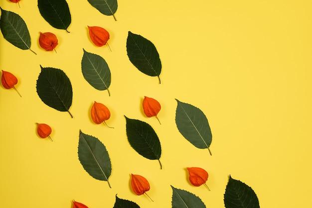 Gelber hintergrund mit einem muster von frischen grünen blättern und von physalis