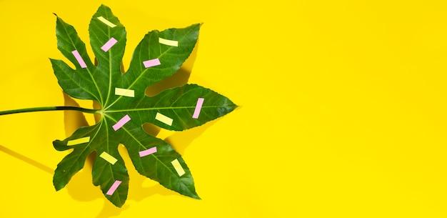 Gelber kopienraumhintergrund und gemaltes kastanienblatt
