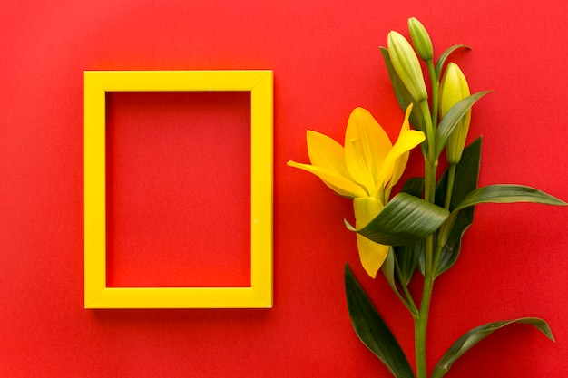 Gelber leerer fotorahmen mit frischer lilie blüht auf rotem hintergrund