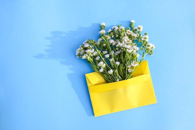 Gelber papierumschlag mit kleinen gartenweißen kamillenblüten auf hellblauem hintergrund. festliche blumenvorlage. grußkarten-design. ansicht von oben.