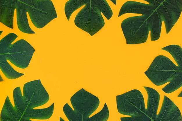 Gelber rahmenhintergrund mit tropischen anlagen