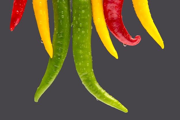 Gelber, roter und grüner heißer chili auf grauem hintergrund. pfeffer. pflanzliche vitaminnahrung.