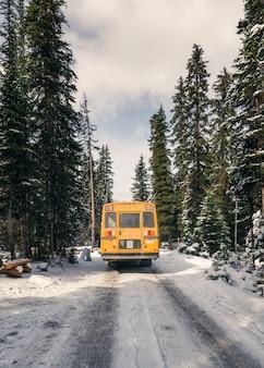 Gelber schulbus, der im winter im kiefernwald fährt