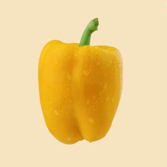 Gelber süßer bulgarischer grüner pfeffer, paprika auf farbhintergrund