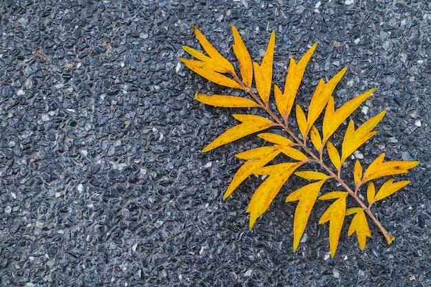 Gelbes blatt auf schwarzem terrazzoboden