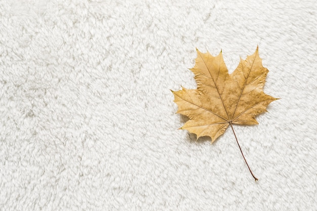Gelbes blatt auf weißem pelzhintergrund. gemütliches herbstkonzept.