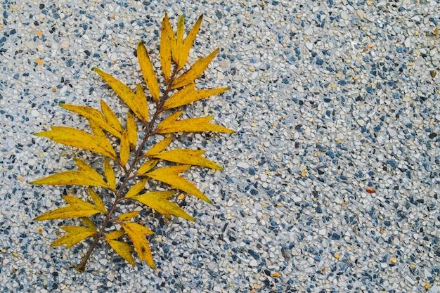 Gelbes blatt auf weißem terrazzoboden