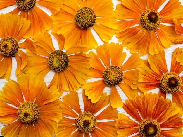 Gelbes blumenmuster auf einem weißen holztisch. sicht von oben. kopierraum, hintergrund für postkarten