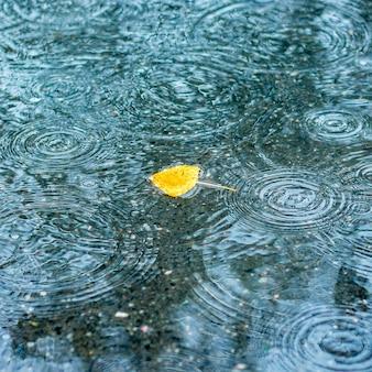 Gelbes herbstblatt in einer pfütze während des regens
