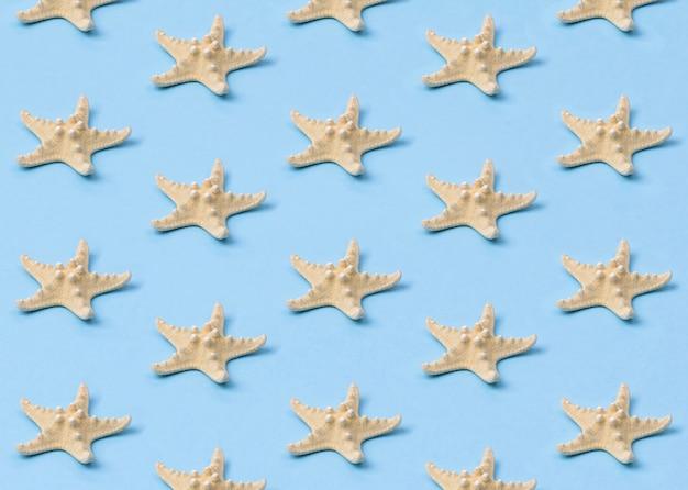 Gelbes starfishmuster auf pastellblau.