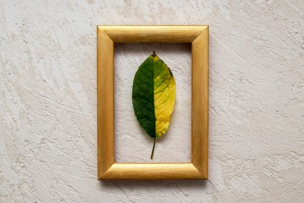 Gelbgrünes gefallenes blatt in einem goldenen fotorahmen. herbstkonzept
