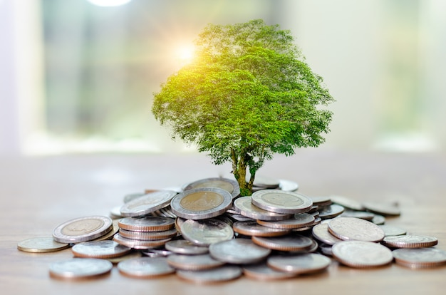 Geldmengenwachstum geld sparen