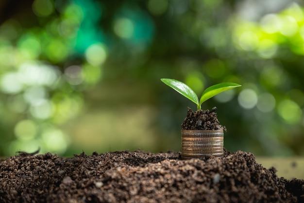 Geldmengenwachstum geld sparen.