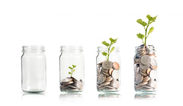 Geldmünzen und baum, die im glas wachsen.