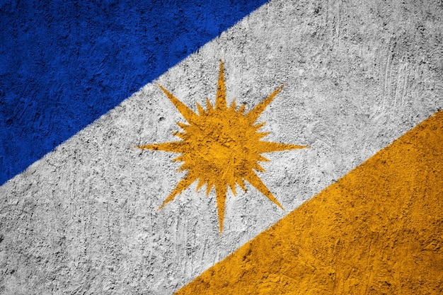 Gemalte staatsflagge von bandeira tun tocantins auf einer betonmauer