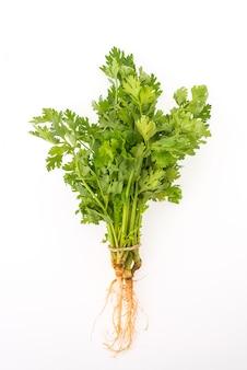 Gemüse grün bund petersilie hintergrund