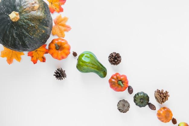 Gemüse in der nähe von baumstümpfen und laub