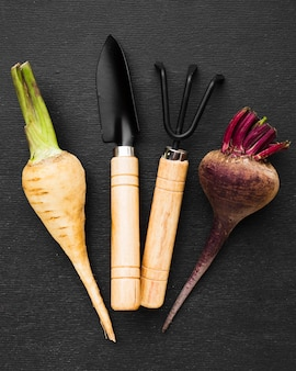 Gemüse und gartenanordnung auf dunklem hintergrund