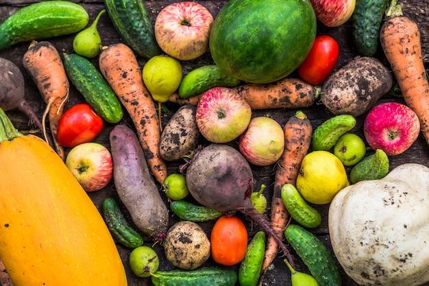 Gemüse und obst aus dem gartenbau